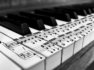 müzik notaları